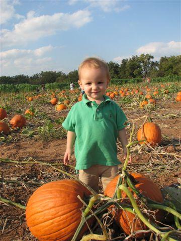 Jacob in pumpkin patch