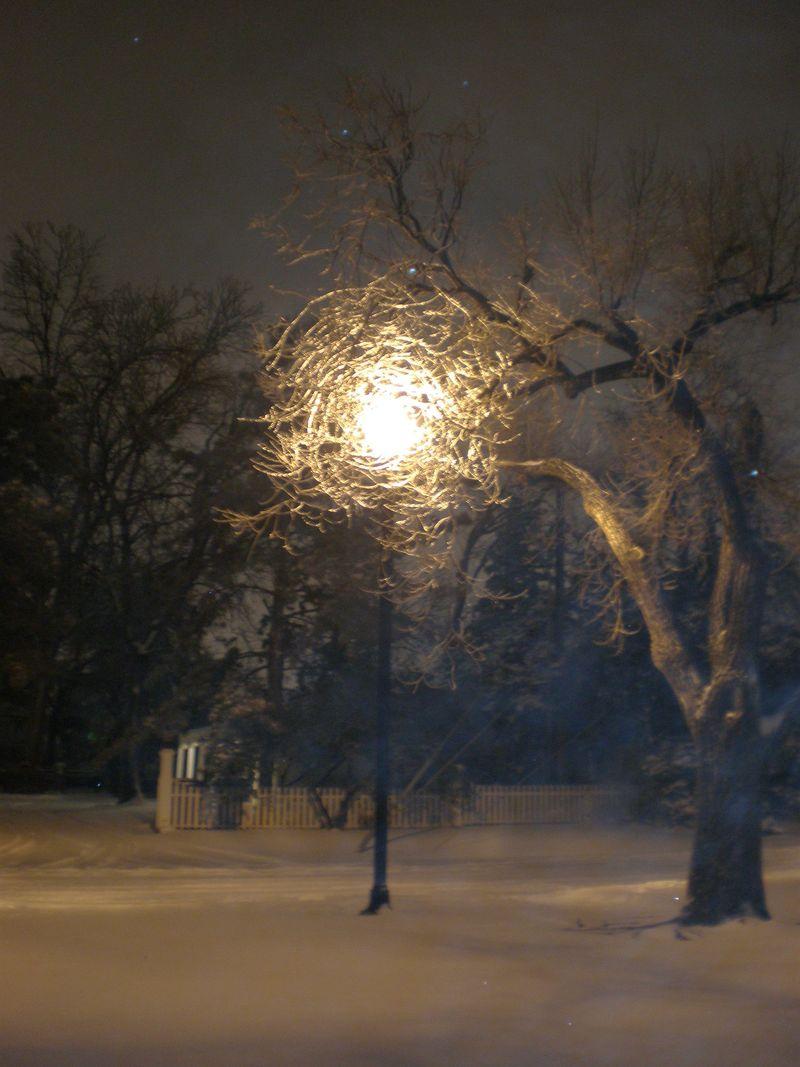 Snow Storm 015