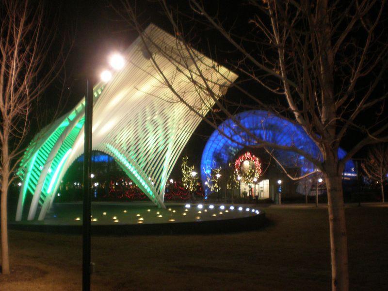 Christmas 2011 046